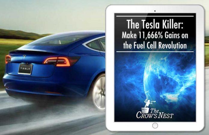 Tesla-Killer-Crow-Nest-Investment-Service
